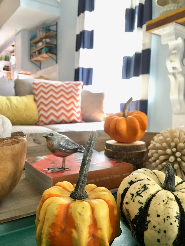 styling_a_coffee_table_fall_pumpkins_tray_rustic_cottage_fireplace_mantel_decor_gourds