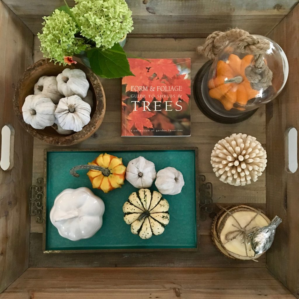 styling_a_coffee_table_fall_pumpkins_tray_rustic_cottage_fireplace_mantel_decor_trees_white_pumpkins