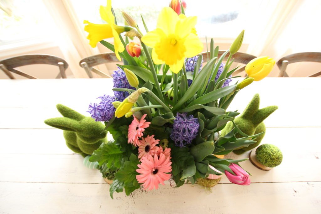 gerbera_daisies_container_garden_spring_easter_planter_flowers_white_moss_rabbits_hyacinths