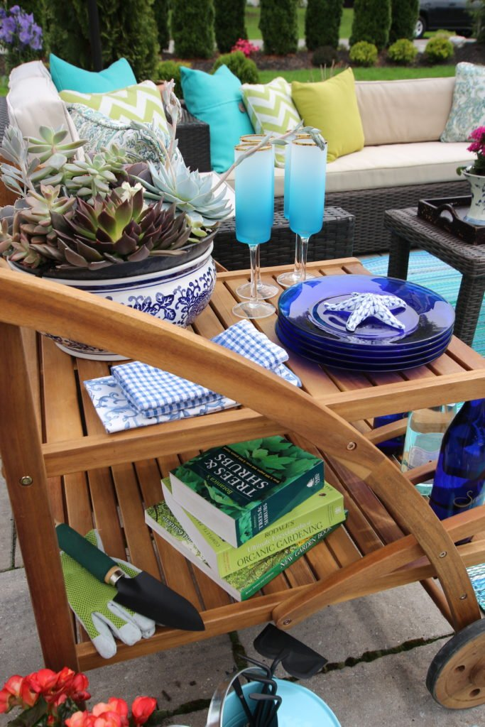 Amie_freling_meme_hill_studio_raymour_flanigan_bar_cart_outdoor_mothers_day_ideas_rochester_ny_teak