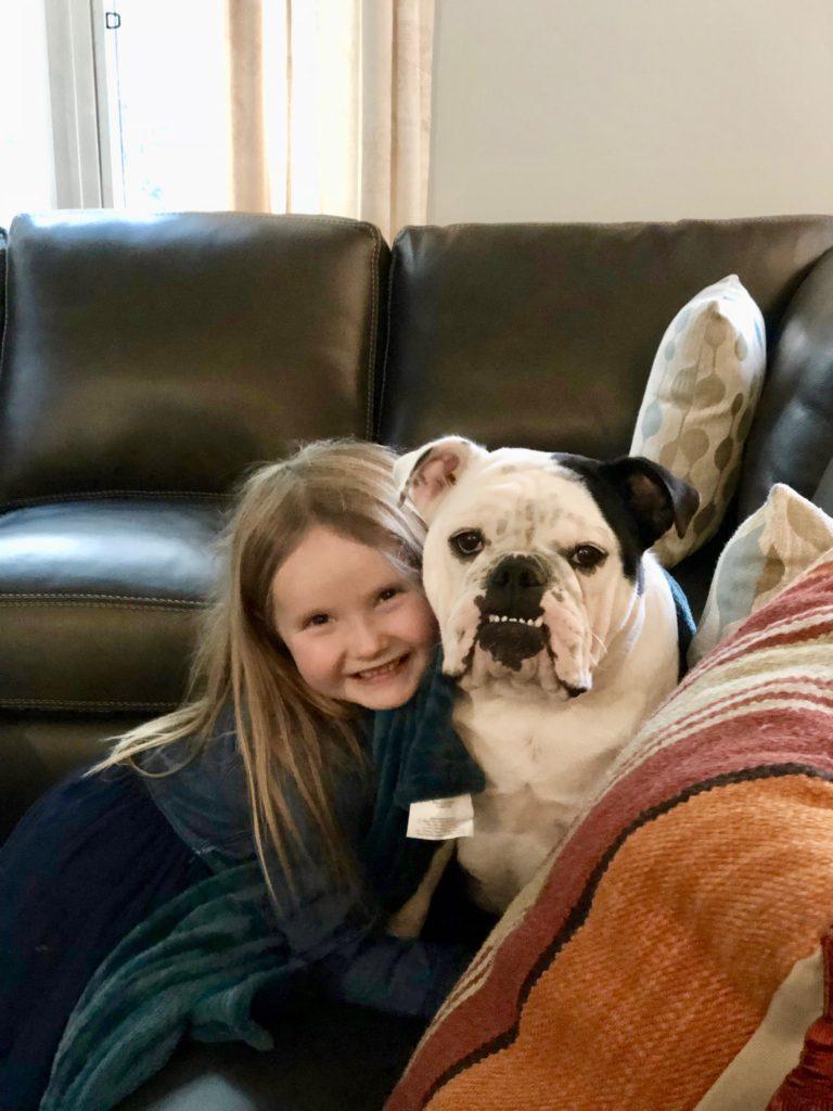 pet friendly leather sofas, pet friendly sectionals